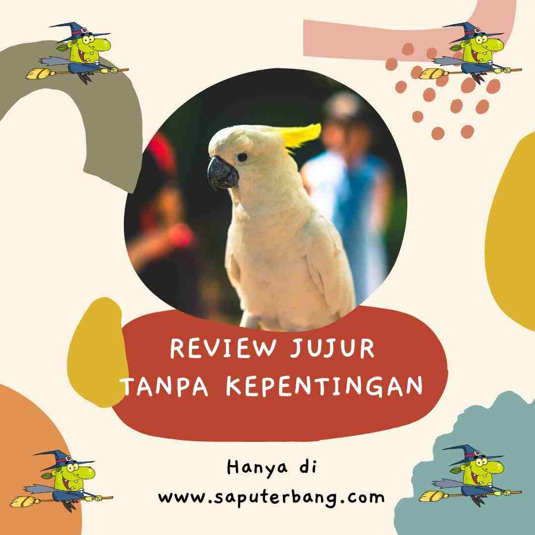 review dan ulasan jujur